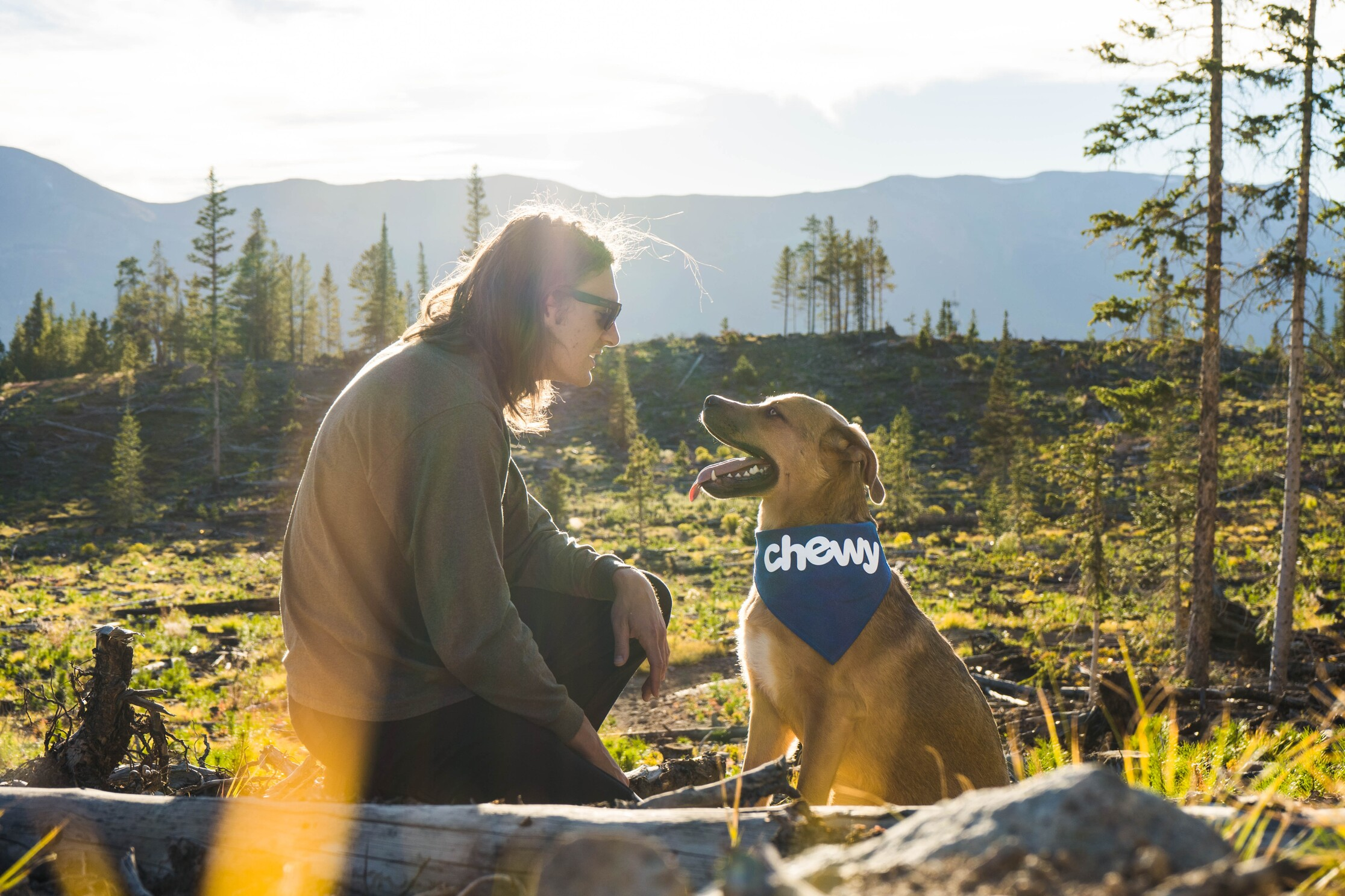 a remote worker connecting with nature with their pet dog to improve remote workplace wellbeing